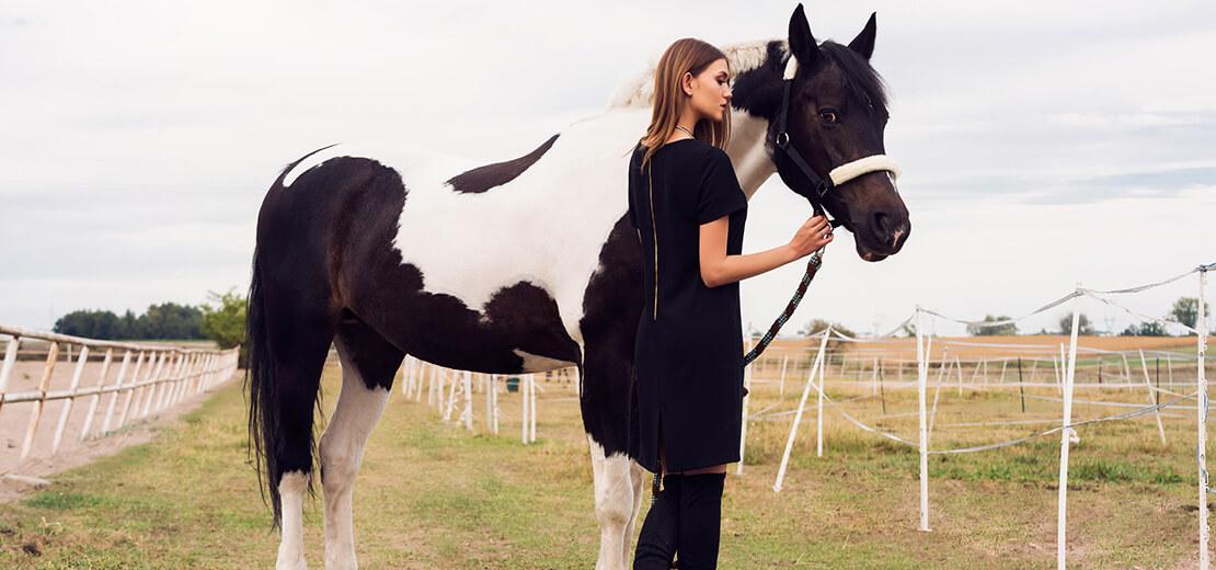 mała czarna - modna sukienka 2018