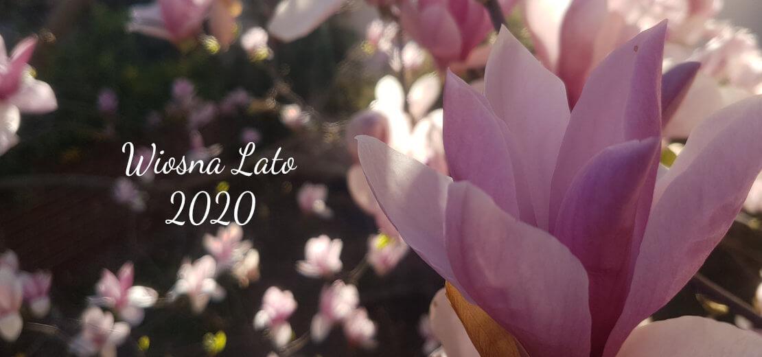 Kolekcja wiosna lato 2020